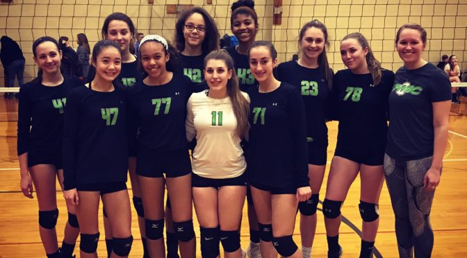CHVBC 15 Dynamite Perfect on the Day